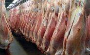 افزایش ۴۳درصدی عرضه گوشت قرمز در بازار