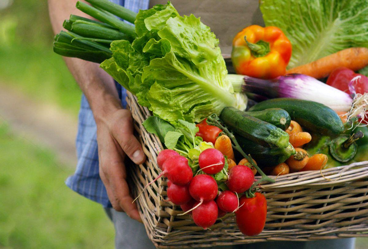 سبزیجاتی که نباید از خوردن آنها غافل شد