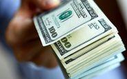 ۶۵ هزار دلار ارز قاچاق در فرودگاه امام (ره) کشف و ضبط شد