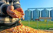 وزیر کشاورزی: راه حذف دلالان، ایجاد زنجیره تولید نهاده هاست