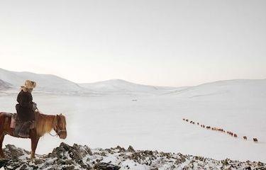 عکس منتخب نشنال جئوگرافیک   کوچ زمستانه