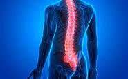 تاثیر سلولهای بنیادی در درمان آسیب نخاعی