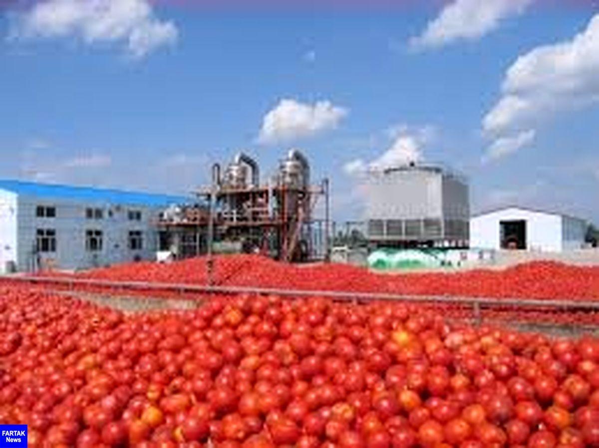 مهلت صادرات رب گوجه فرنگی تمدید شد