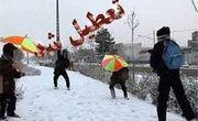تمام مقاطع تحصیلی استان زنجان فردا تعطیل است