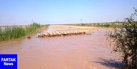 خسارت سیل به 200 خانه مسکونی در رودبار جنوب