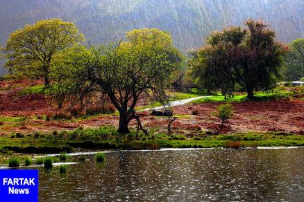 بارش۸۳ میلی متری باران در یاسوج/بارشها ادامه دارد