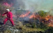 آتش سوزی دوباره در تالاب میانکاله
