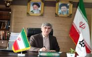  ادامه روند خرید تضمینی دانه روغنی آفتابگردان در استان کرمانشاه