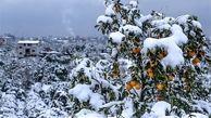 تداوم بارش برف و کاهش ناگهانی دما در کشور