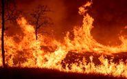 خوزستان / تمامی نیروها درحال اطفای آتش سوزی دو منطقه اندیکا هستند