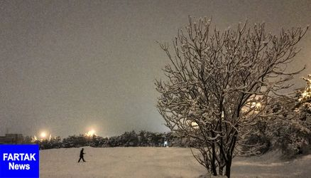 بارش برف در ایلام آغاز شد