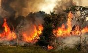 مرگ سه مرد روستایی در میان آتش های زاگرس / تنگه