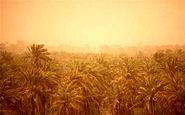 کلاف سردرگم ریزگردها در خوزستان + فیلم