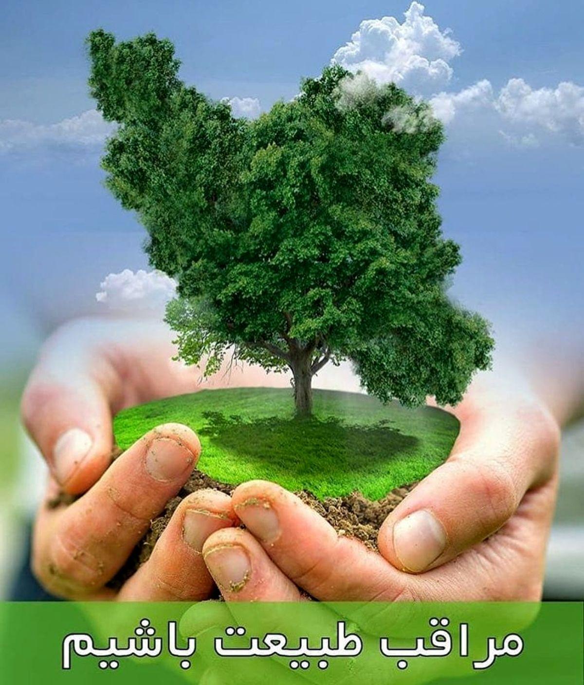 انتظار تحول، تغییر و رویش باتخریب طبیعت همخوانی ندارد