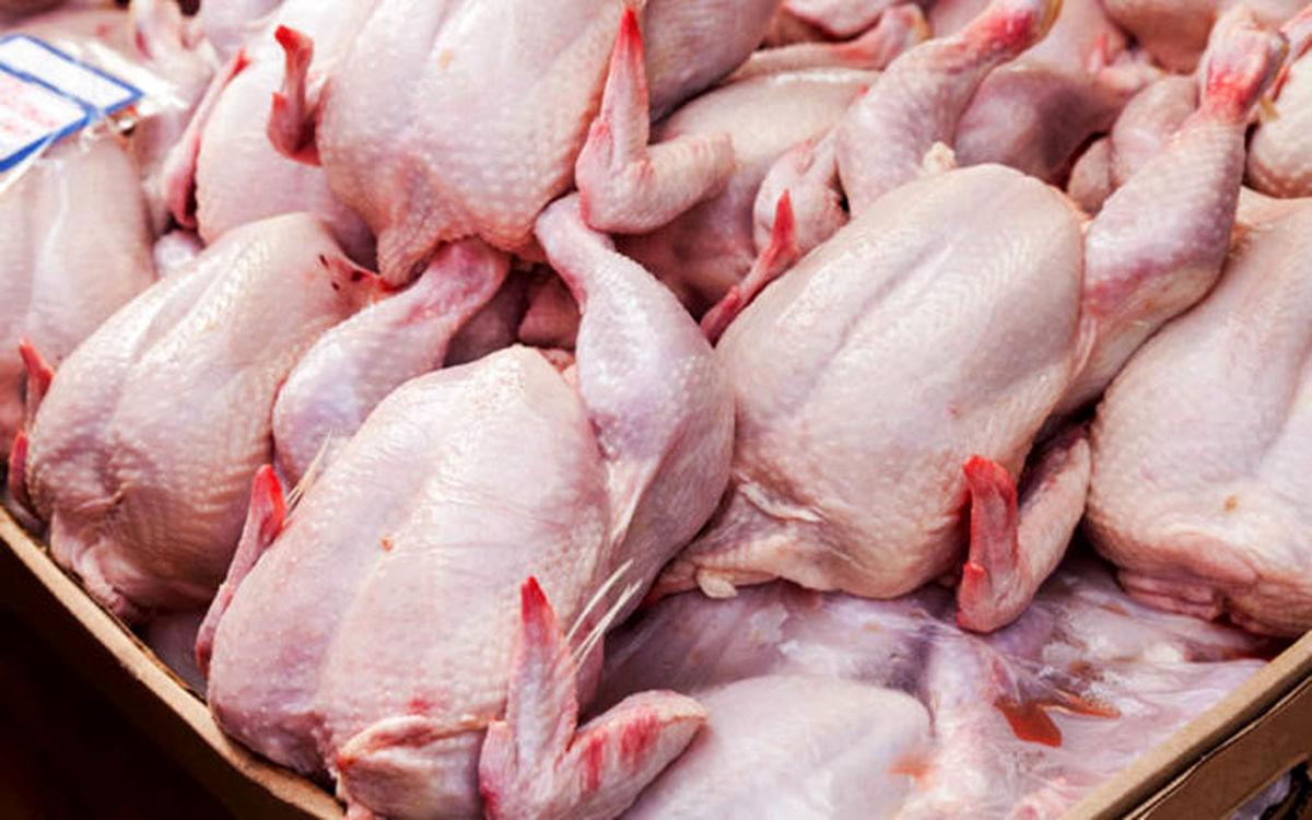افزایش چراغ خاموش قیمت مصوب مرغ در بازار!