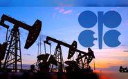 مذاکرات اوپک برای کاهش تولید بیش از یک میلیون بشکه نفت