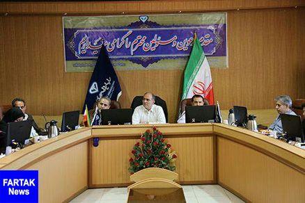 استان کرمانشاه قطب تولیدات دامی کشور است