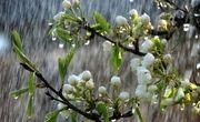 آبوهوای خنک و باران در راه گیلان