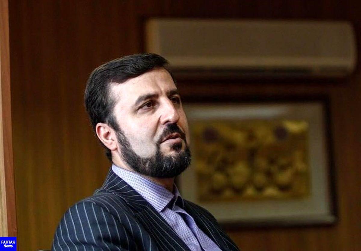 غریبآبادی: ۲۰ درصد از کل بازرسیهای آژانس در ایران انجام میشود