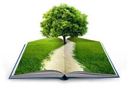 دستاوردهای دانشگاهها در حوزه مدیریت سبز رونمایی می شود