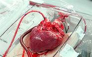 روایت شش ساعت نفسگیر برای حیات قلبی که از رشت به تهران رفت