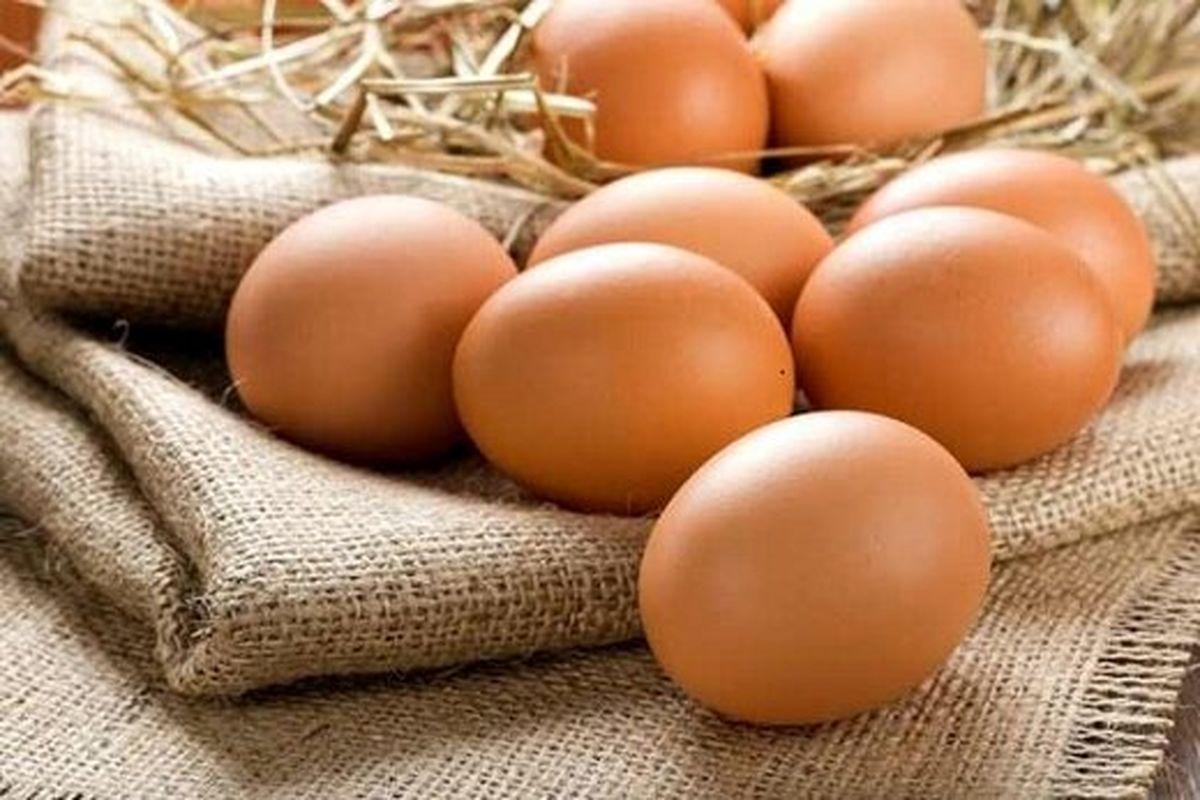 چرا تخم مرغ به 65 هزار تومان رسید؟/ گرانی عجیب هر شانه تخم مرغ در بازار