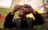 برگزاری همزمان سومین نمایشگاه یلدا با اولین جشنواره شکرانه محصولات کشاورزی