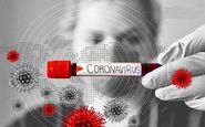 تولید داروی پیشگیری از کرونا بر پایه مواد گیاهی در دانشگاه تهران