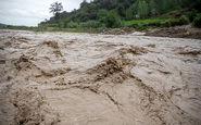 آب های خروشان رودخانه وکیل آباد نو عروس را بلعید