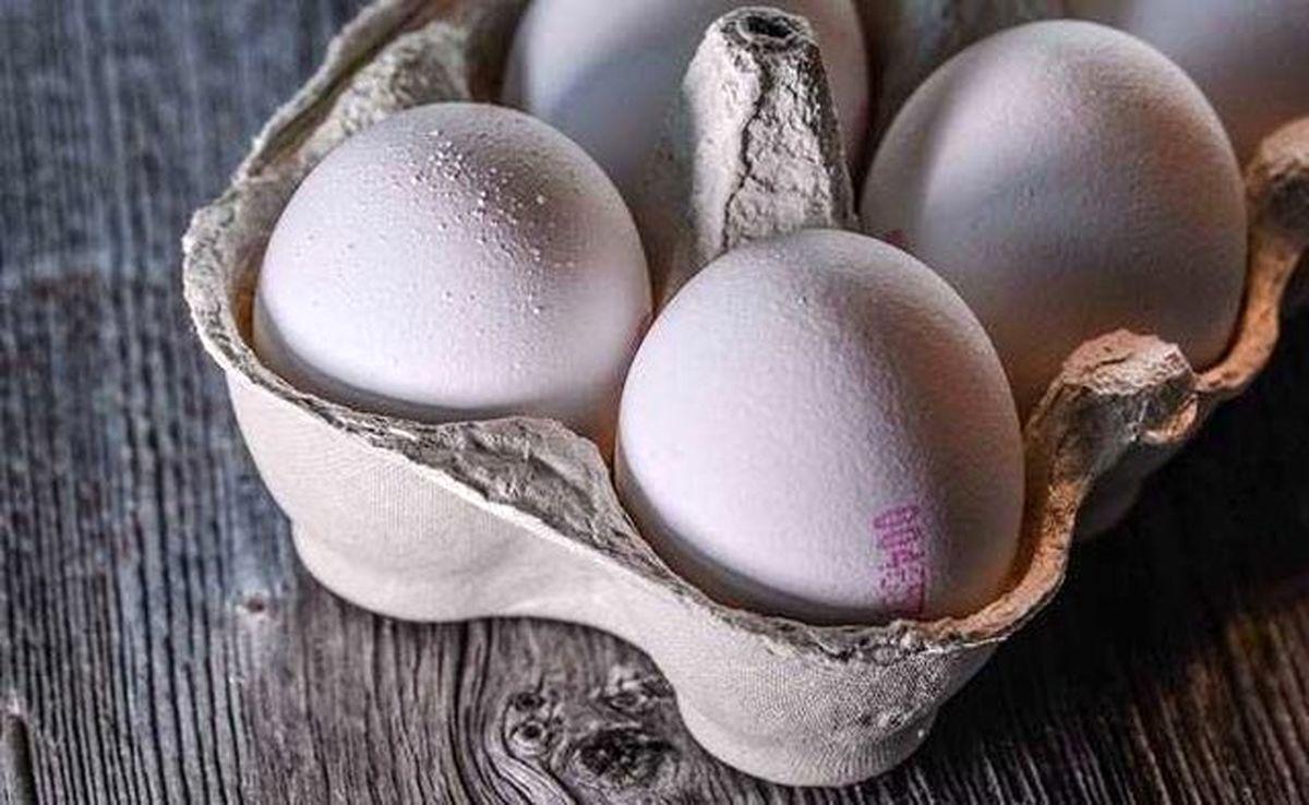 چرایی افزایش قیمت تخم مرغ؟!