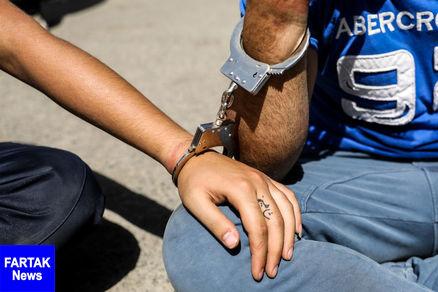 دستگیری دو تن از زورگیران جنوب تهران