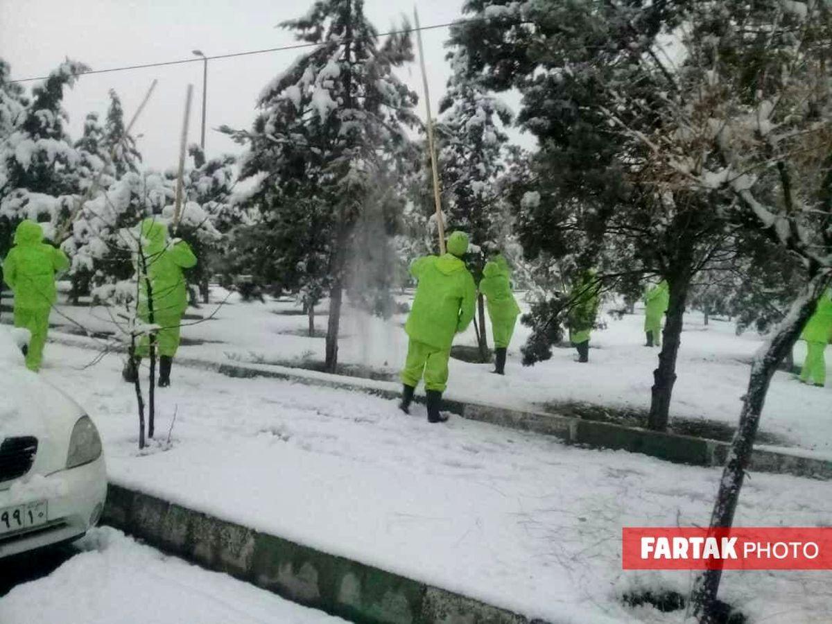 آماده باش مناطق ٢٢ گانه شهرداری تهران در پی بارش برف