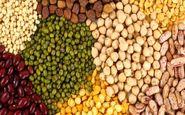 کشف ۲۱ تن انواع حبوبات احتکار شده در شهرستان رودان