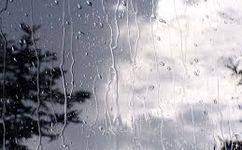 افزایش نسبی دما در کشور / بارش باران در شمال شرق از دوم فروردین