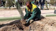 کشت گونههای کمآببر در استان همدان مورد توجه قرار گیرد
