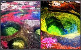 رودخانه رنگین کمانی در کلمبیا + فیلم