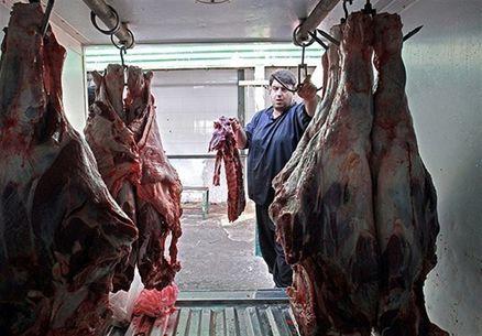 فروش فوقالعاده گوشت گرم دولتی در ۱۵۸ نقطه تهران
