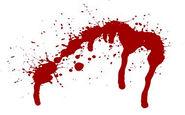 مرگ دردناک مرد جوان زیر چرخهای اتوبوس + فیلم